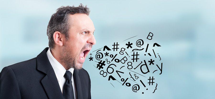 Freie Meinungsäußerungen und Schmähkritik