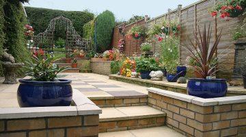 WEG Anlage Beseitigung von Pflanzen von Terrasse