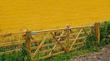 Haftung eines Zaunherstellers für Deckungsschaden eines Landwirts