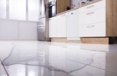 Mietminderung wegen Wasserschäden und schadhafter Holz-Innenfenste