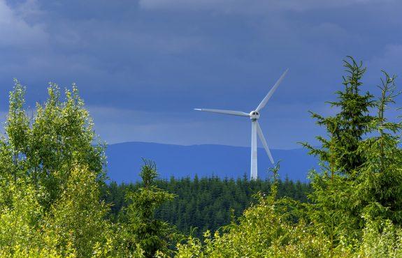 Jagdpachtminderung wegen Errichtung einer Windkraftanlage