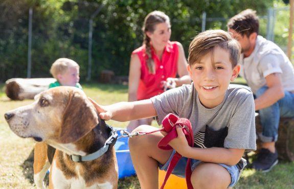 Hundekauf – Ersatz von Tierarztkosten bei Erkrankung