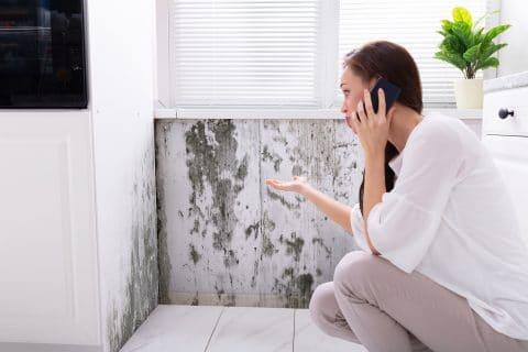 Hausverkauf - Offenbarung von Feuchtigkeitsschäden