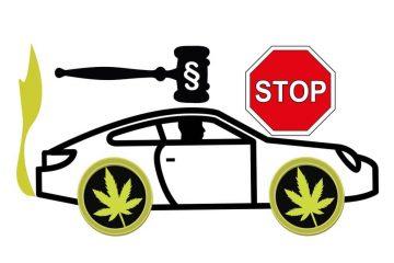 Cannabis-Konsum – erforderliche Fahreignung nach der Fahrerlaubnisverordnung
