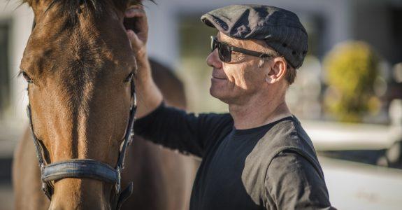 Rücktritt vom Pferde-Kaufvertrag - einheitlicher Gerichtsstand