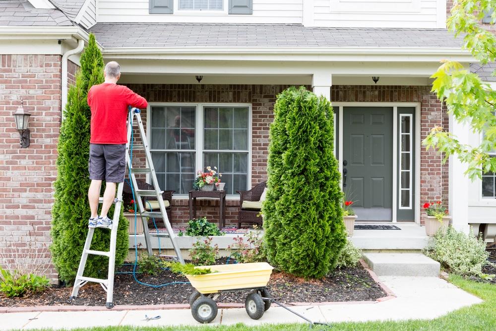 Anspruch Beseitigung von Baumwuchs auf dem Nachbargrundstück -Verjährungseinrede