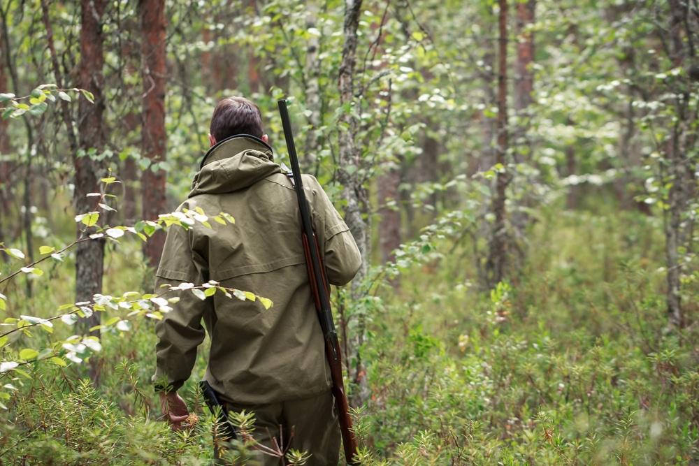 Verantwortlichkeit des Jagdausübungsberechtigten für eine Überpopulation von Wild