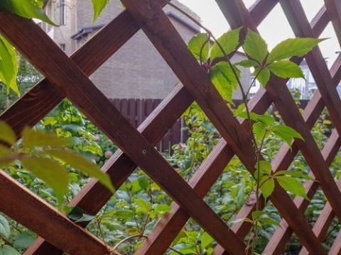 Störungsbeseitigungsanspruch bei zusätzlichem Holzgeflechtzaun des Nachbarn