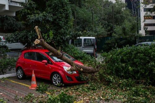 Verkehrssicherungspflicht - Hauseigentümerhaftung für Schäden an geparktem Kraftfahrzeug