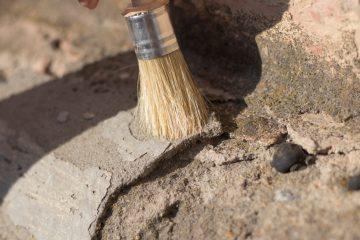 Fossiler-Schatz – Eigentumserwerb an Fossilien durch den Grundstückseigentümer