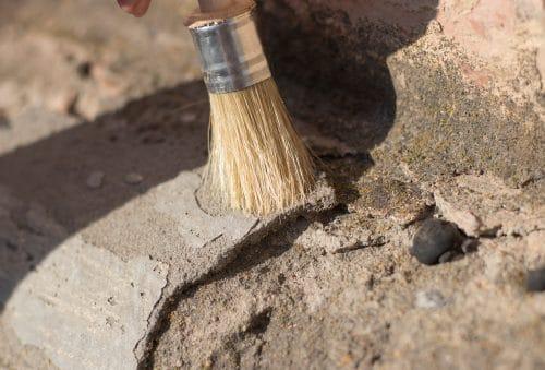 Fossiler-Schatz - Eigentumserwerb an Fossilien durch den Grundstückseigentümer
