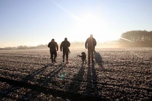 Wildschadensersatz - Pflicht des Landwirts zur Anlegung von Bejagungsschneisen