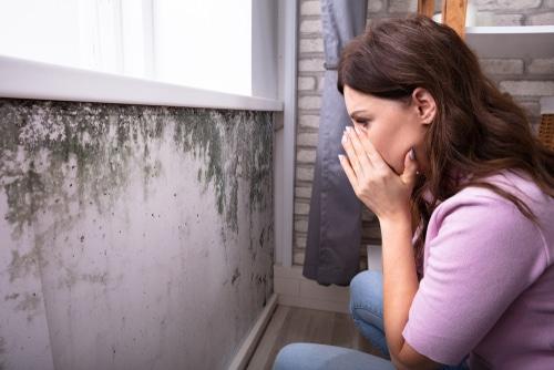 Hausverkauf - Verkäuferhaftung für Feuchtigkeitsschäden