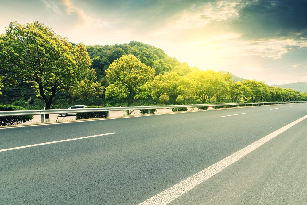 Verkehrssicherungspflicht des Eigentümers eines Waldgrundstücks neben einer Straße