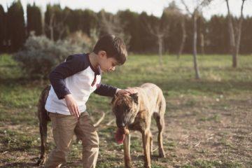 Tierhalterhaftung – Deliktsfähigkeit von Minderjährigen