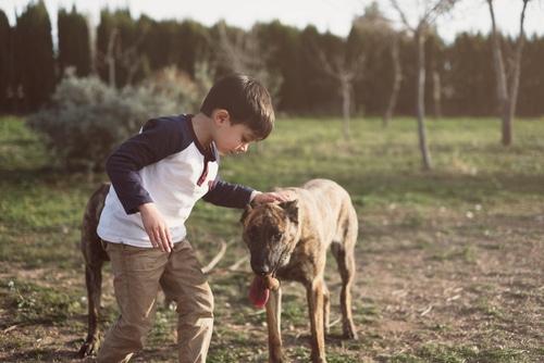 Tierhalterhaftung - Deliktsfähigkeit von Minderjährigen