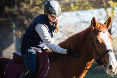 Tierhalterhaftung - Haftungsverzichts bei Proberitt auf Veranlassung des Pferdehalters