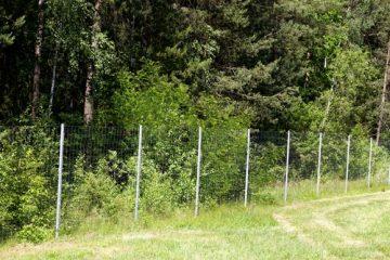 Pflicht des Grundstückspächters zur Duldung der Errichtung eines Wildzauns durch Jagdpächter