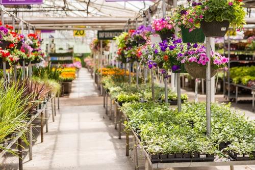 Verkehrssicherungspflicht - Schadensersatzanspruch bei Ausrutschen in Pfütze im Gartencenter