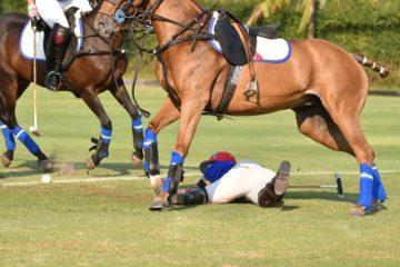 Pferdehalterhaftung – Mitverschulden bei Verletzung eines Jugendlichen durch einen Huftritt