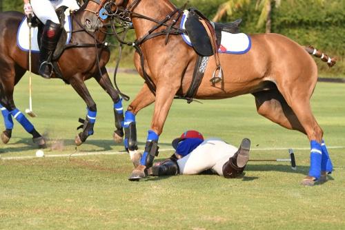 Pferdehalterhaftung - Mitverschulden bei Verletzung eines Jugendlichen durch einen Huftritt