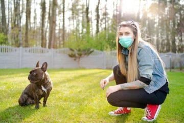 Corona-Pandemie – kein Einzel- und Gruppenunterricht in Hundeschule