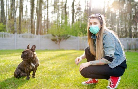 Corona-Pandemie - kein Einzel- und Gruppenunterricht in Hundeschule