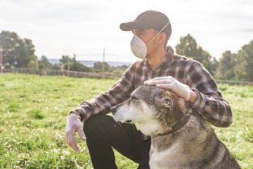 """Corona-Pandemie – Betreiben Hundeschule – keine """"vergleichbare Freizeiteinrichtung"""""""
