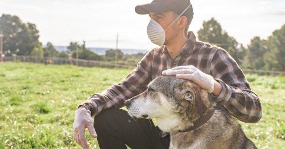 """Corona-Pandemie - Betreiben Hundeschule - keine """"vergleichbare Freizeiteinrichtung"""""""