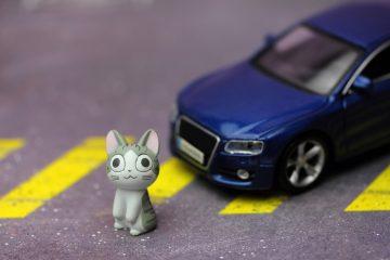 Fahrzeugführerhaftung für kollisionsbedingte Verletzung einer Katze in Spielstraße