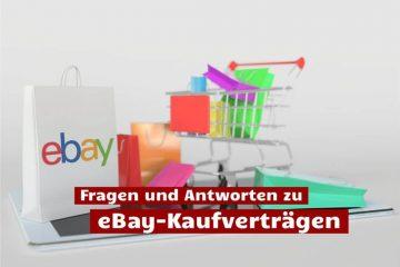 Grundsätzliche Fragen und Antworten zur Auktionsplattform eBay.