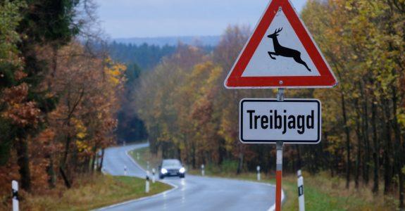 Verkehrssicherungspflicht - Anforderungen an Veranstalter einer Treibjagd