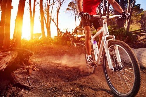 Verkehrssicherungspflicht Waldbesitzer für Unfall eines Mountainbikefahrers
