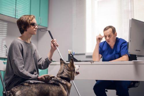 Durchquerung Praxisräumen in Begleitung Blindenführhund